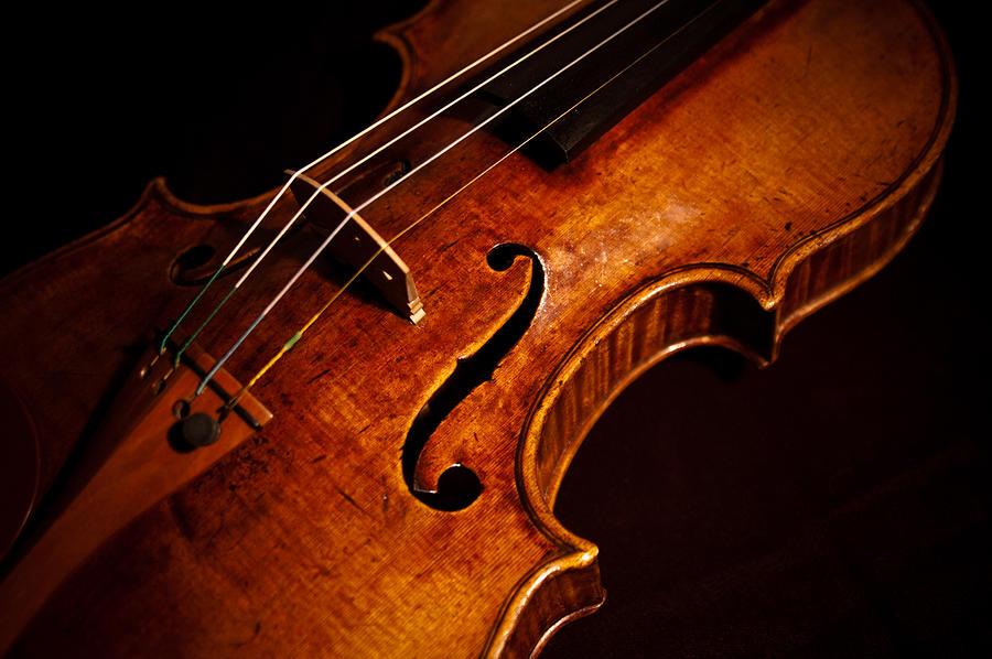 goffriller-violin-color-sam-hymas