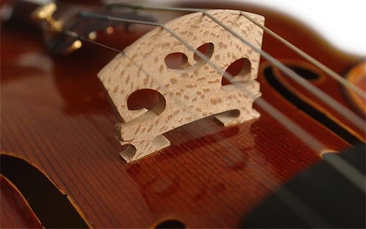 violin-anton-signature-bridgep copy